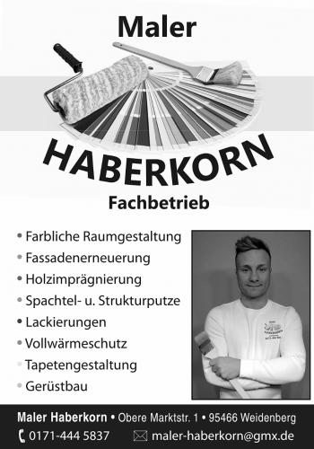 haberkorn_2017
